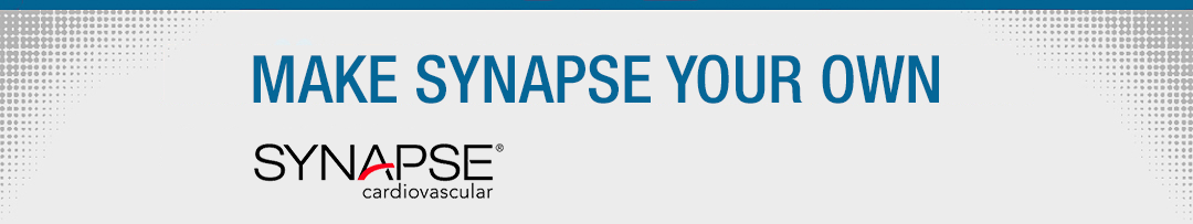 Make Synapse Your Own - Synapse CV